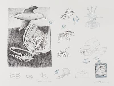 Thoughts on first contact (from the Duyfken: The Aboriginal Print Portfolio); 2006; 2007/0322.8