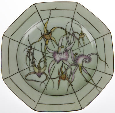 WA Spider Orchid plate