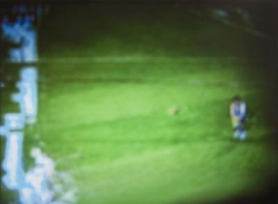 Collingwood vs St Kilda, 15-09-08 #2; 2009; 2009/0123