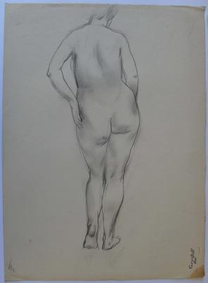 not titled [nude study I]