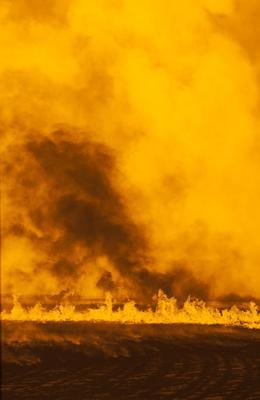 Wyalkatchem Autumn Fire #3