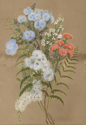 Eremaea Violacea; Eremaea Beaufortiodes; Chamelaucium ?Pauciflorum; Melaleuca Radula