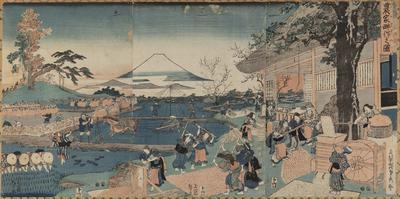 Rural scene with Fuji in the background