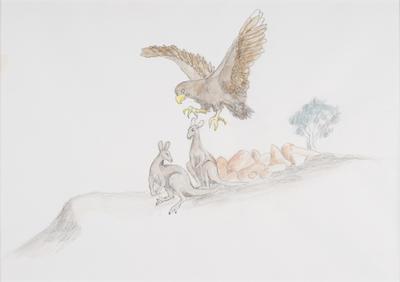 Warragarna (Eagle)